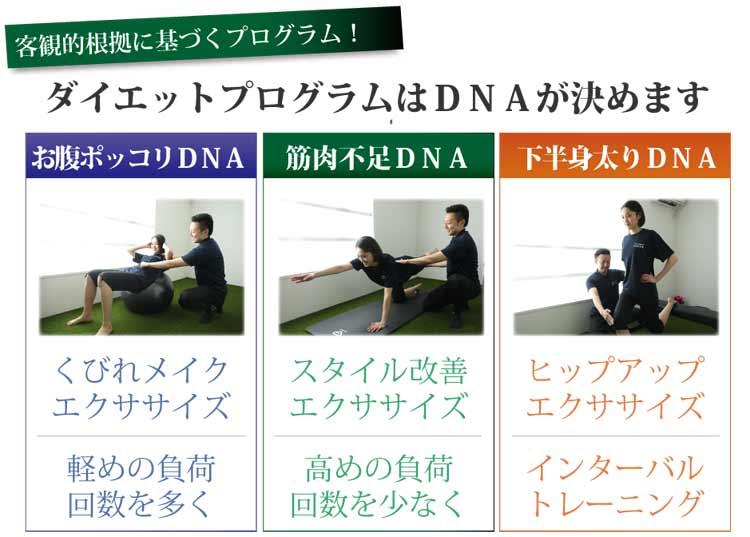 DNAに合ったトレーニングメニュー