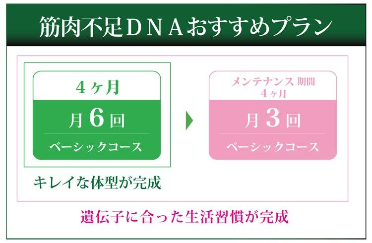 筋肉不足DNAおすすめプラン